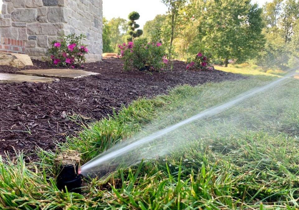 5 Ways A Professional Irrigation Systems Adds Value To Your Home